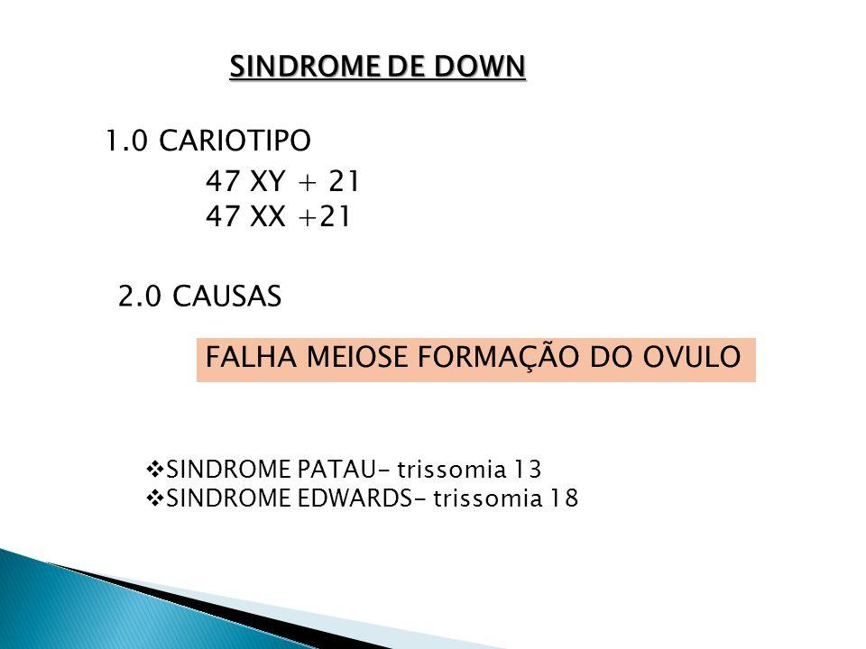 FALHA MEIOSE FORMAÇÃO DO OVULO
