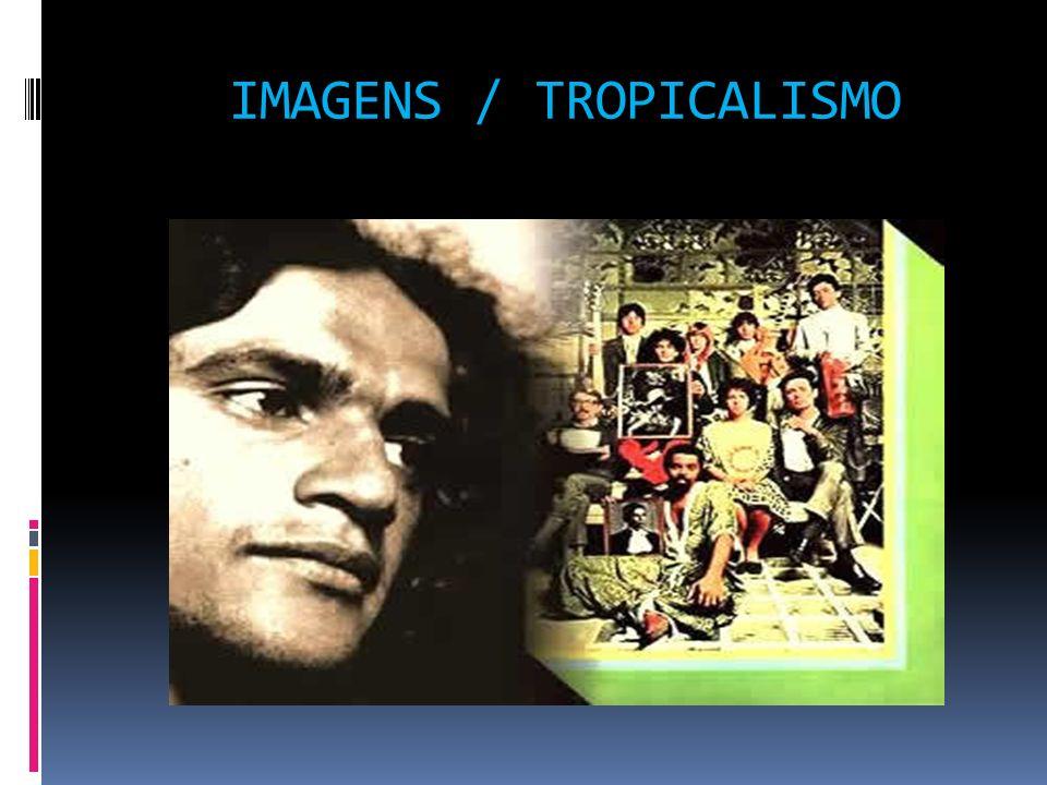IMAGENS / TROPICALISMO