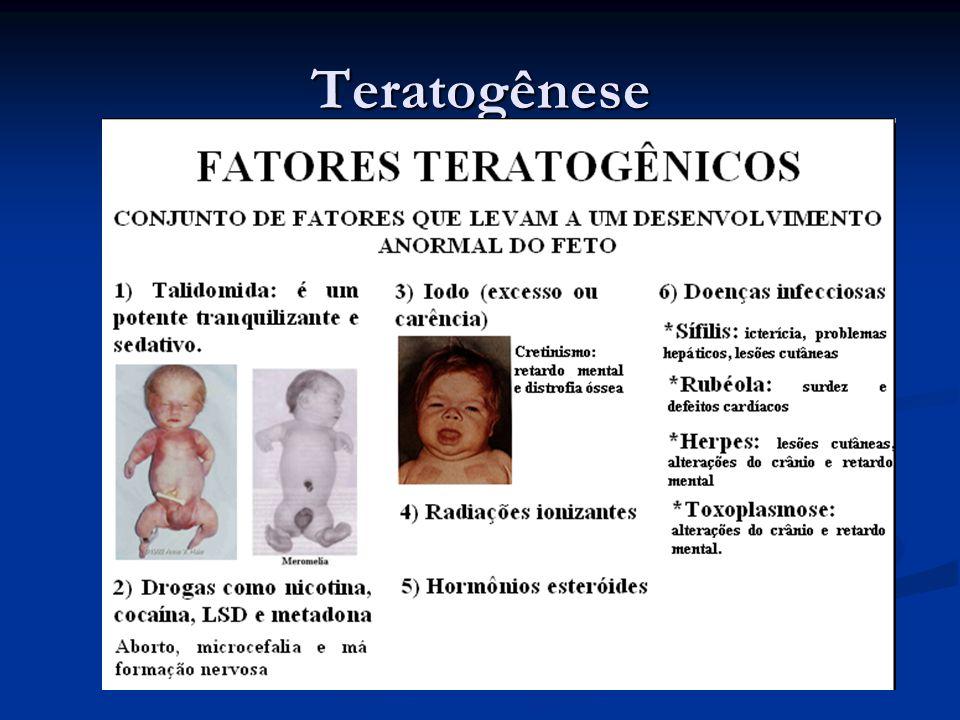 Teratogênese