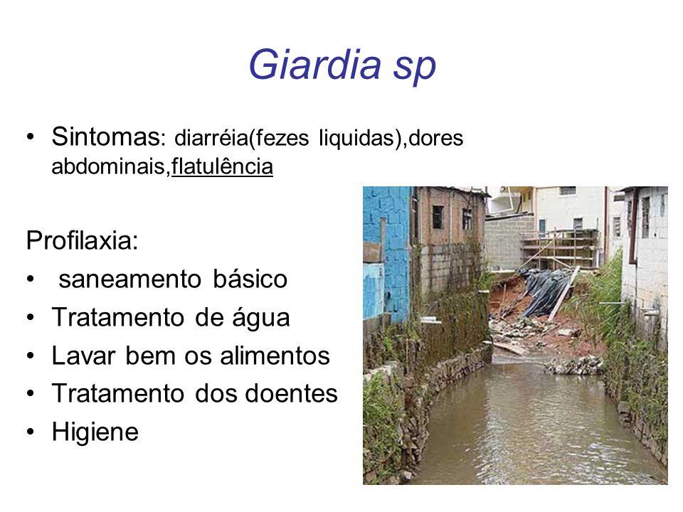 Giardia sp Sintomas: diarréia(fezes liquidas),dores abdominais,flatulência. Profilaxia: saneamento básico.