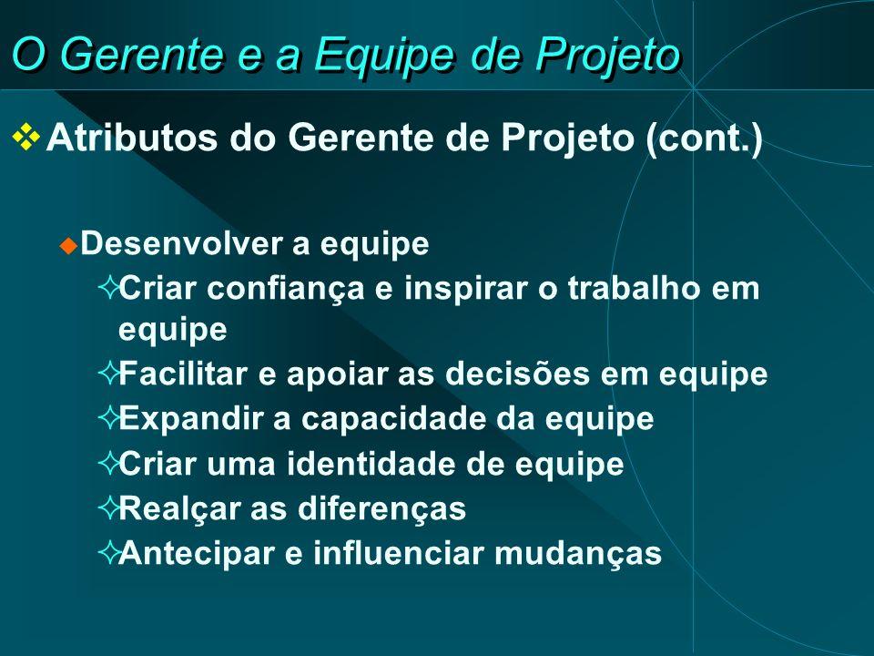 O Gerente e a Equipe de Projeto