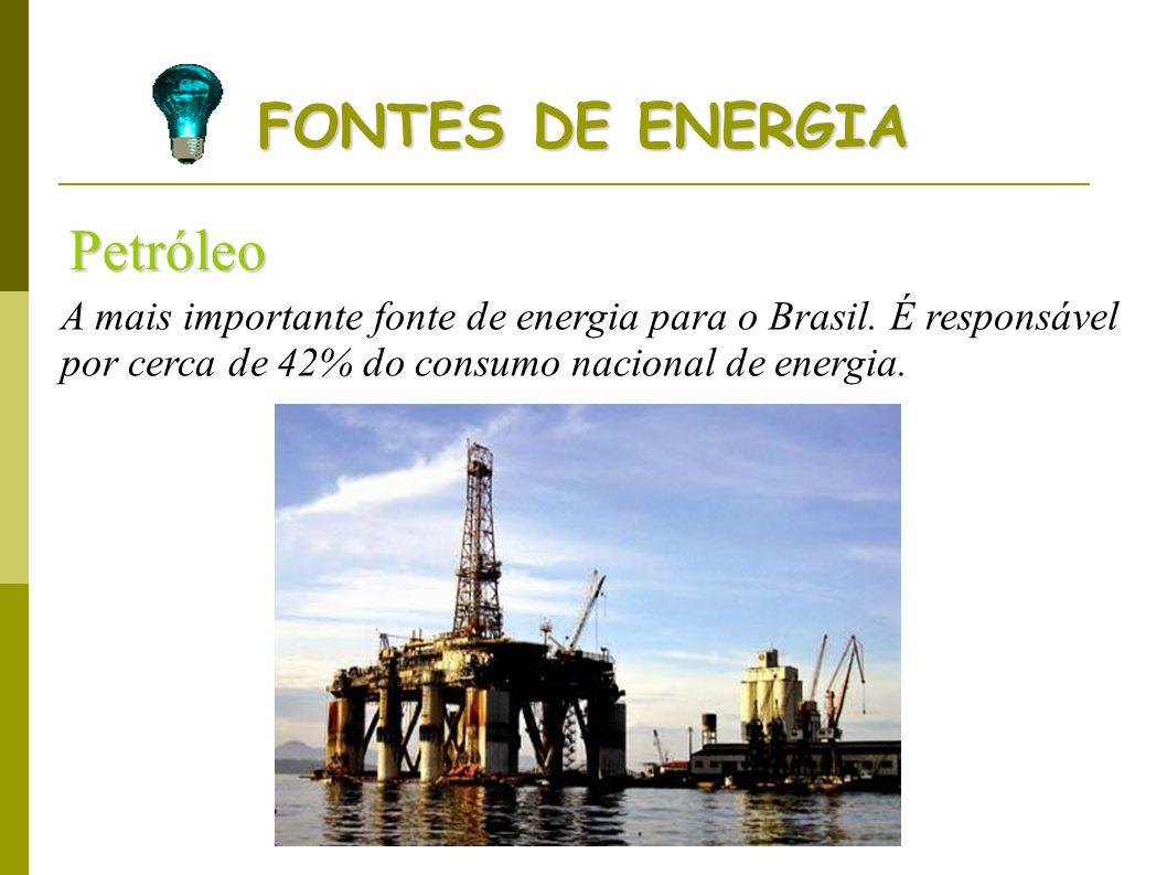 FONTES DE ENERGIA Petróleo