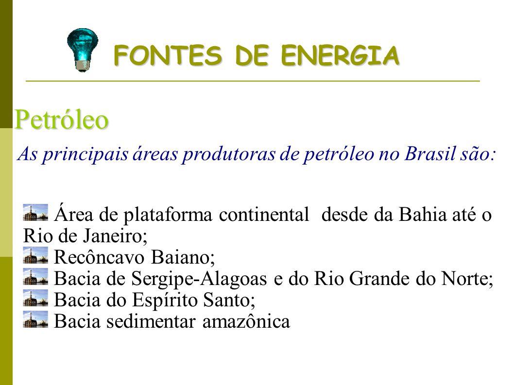 As principais áreas produtoras de petróleo no Brasil são: