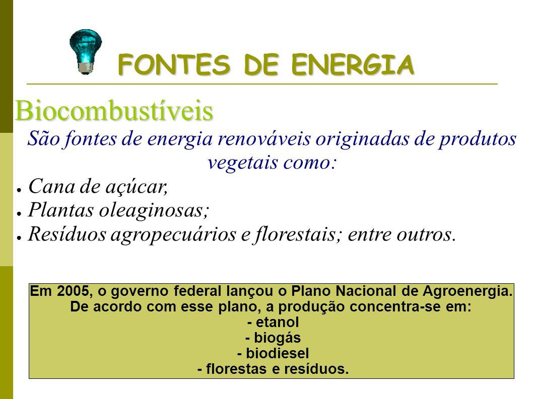 Biocombustíveis FONTES DE ENERGIA