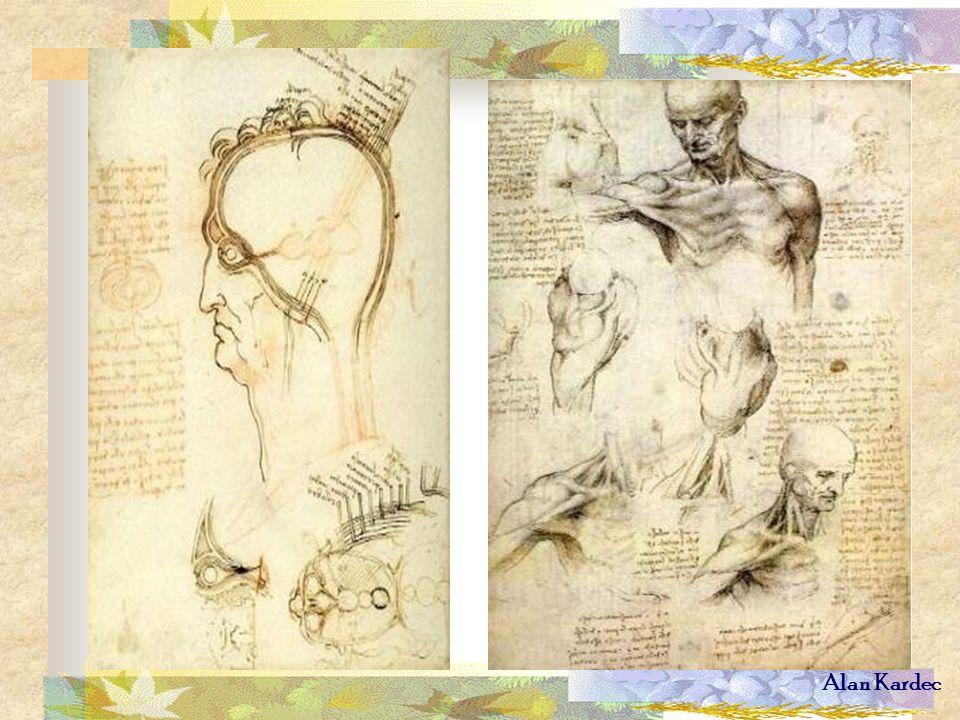 Anatomia do olho e Pescoço e ombros