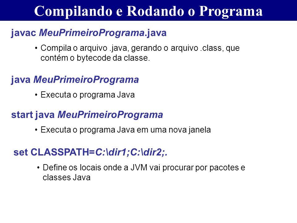 Compilando e Rodando o Programa