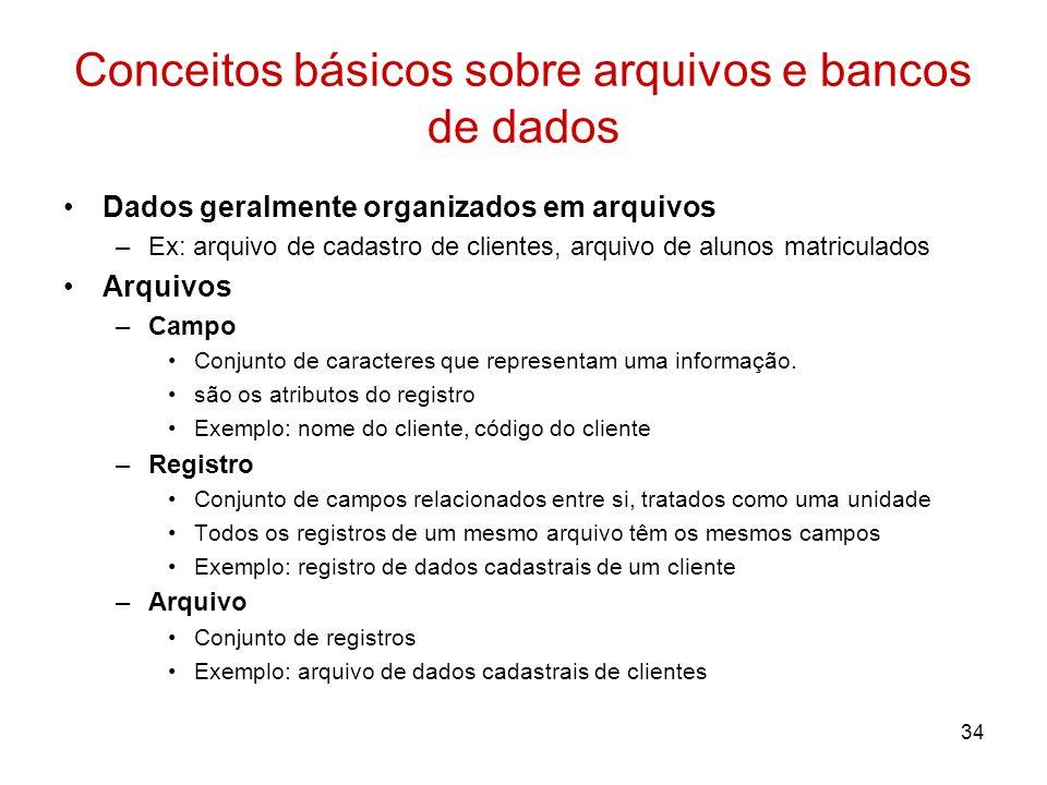 Conceitos básicos sobre arquivos e bancos de dados