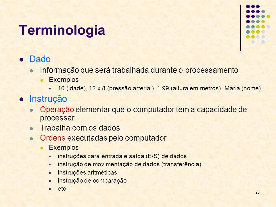 Terminologia Dado Instrução