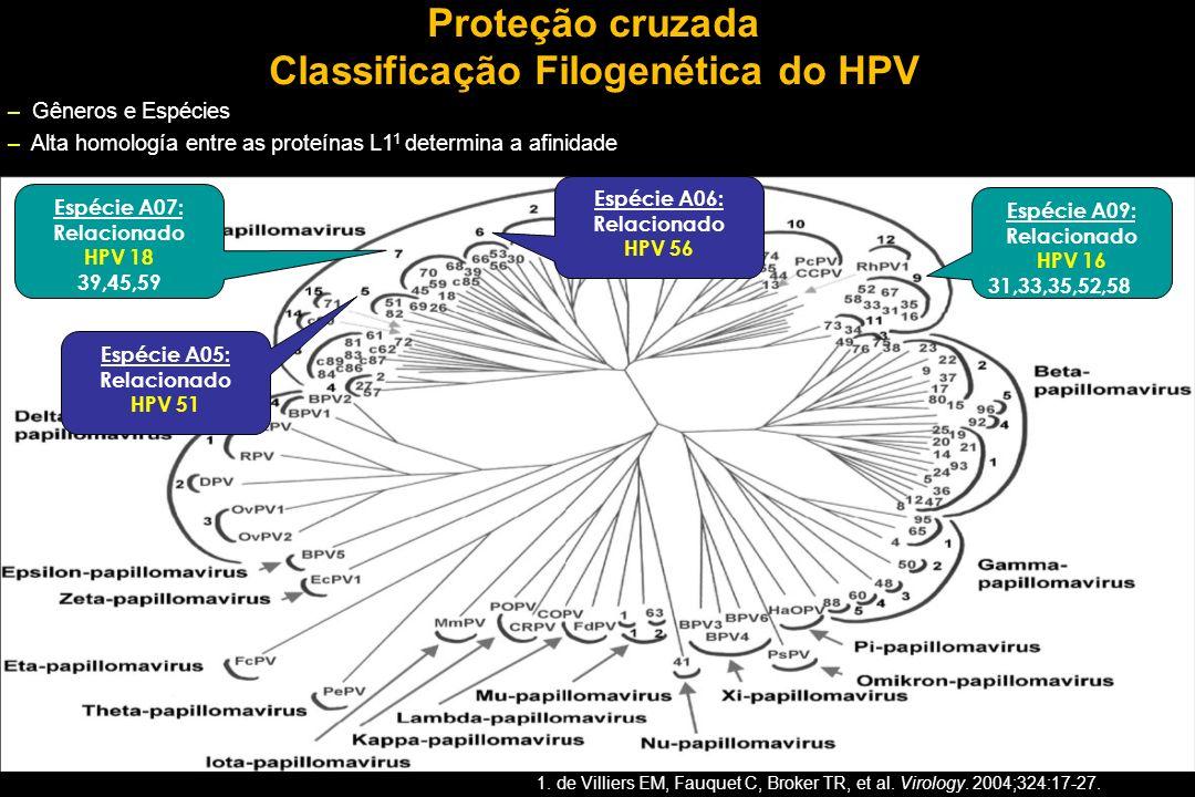 Classificação Filogenética do HPV