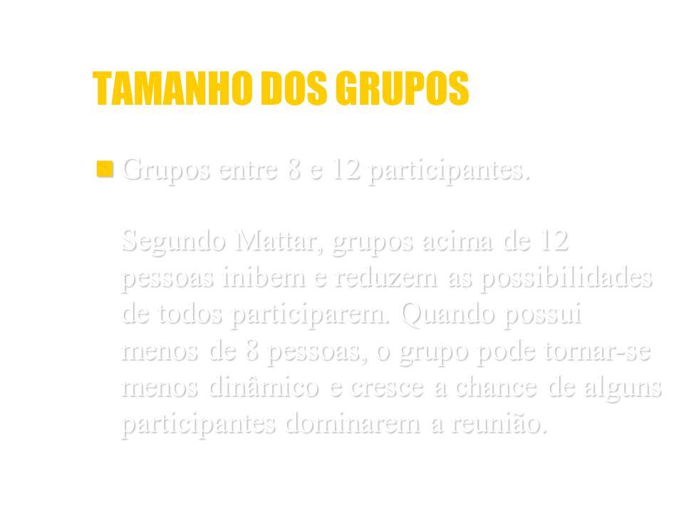 TAMANHO DOS GRUPOS Grupos entre 8 e 12 participantes.