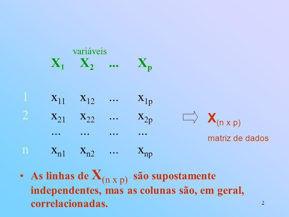 variáveis X1 X2 ... Xp. 1 x11 x12 ... x1p. 2 x21 x22 ... x2p ... ... ... ... n xn1 xn2 ... xnp.