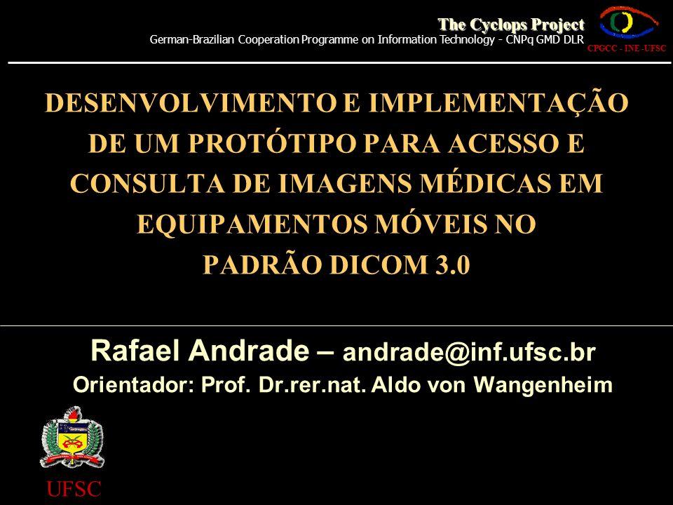 Orientador: Prof. Dr.rer.nat. Aldo von Wangenheim