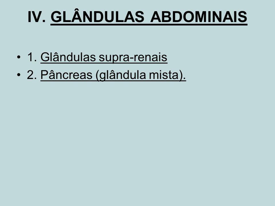 IV. GLÂNDULAS ABDOMINAIS