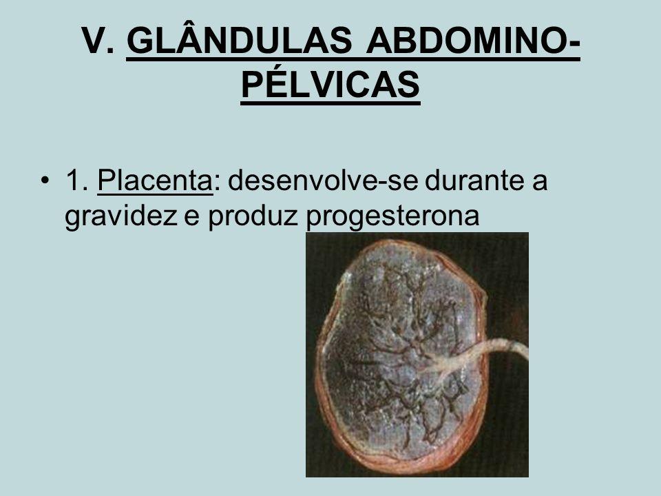 V. GLÂNDULAS ABDOMINO-PÉLVICAS