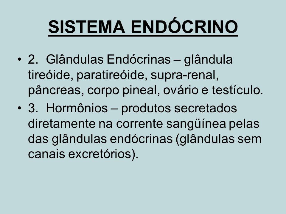 SISTEMA ENDÓCRINO 2. Glândulas Endócrinas – glândula tireóide, paratireóide, supra-renal, pâncreas, corpo pineal, ovário e testículo.