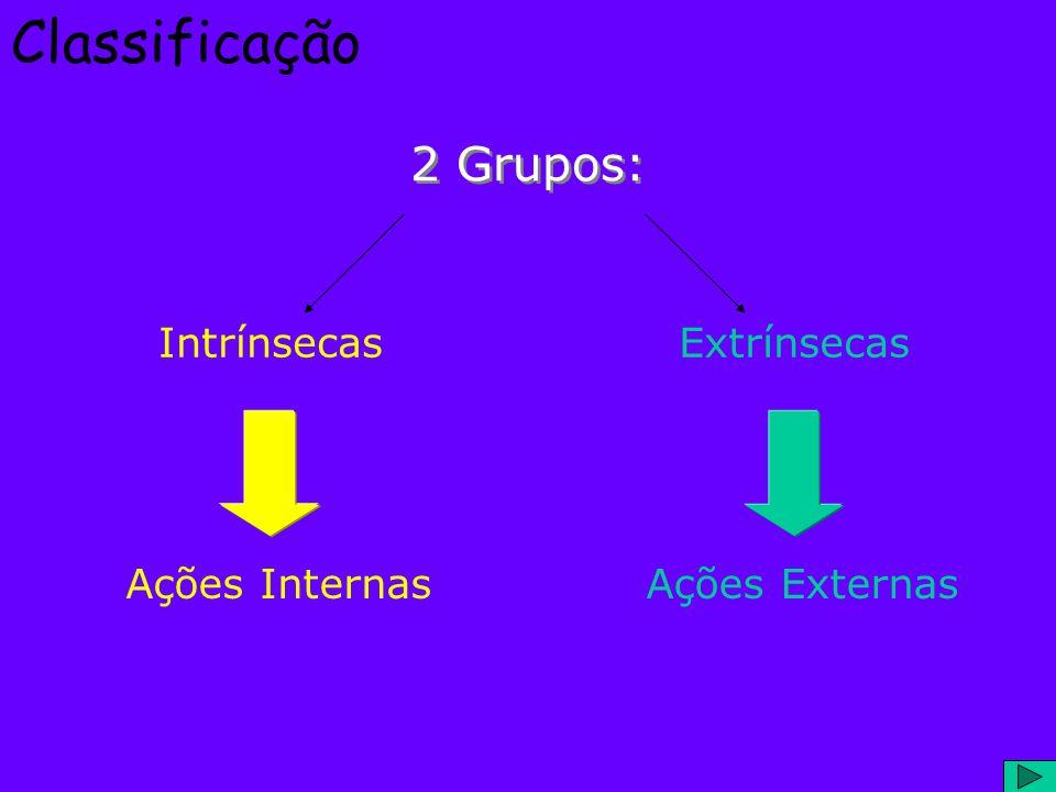 Classificação 2 Grupos: Intrínsecas Extrínsecas Ações Internas