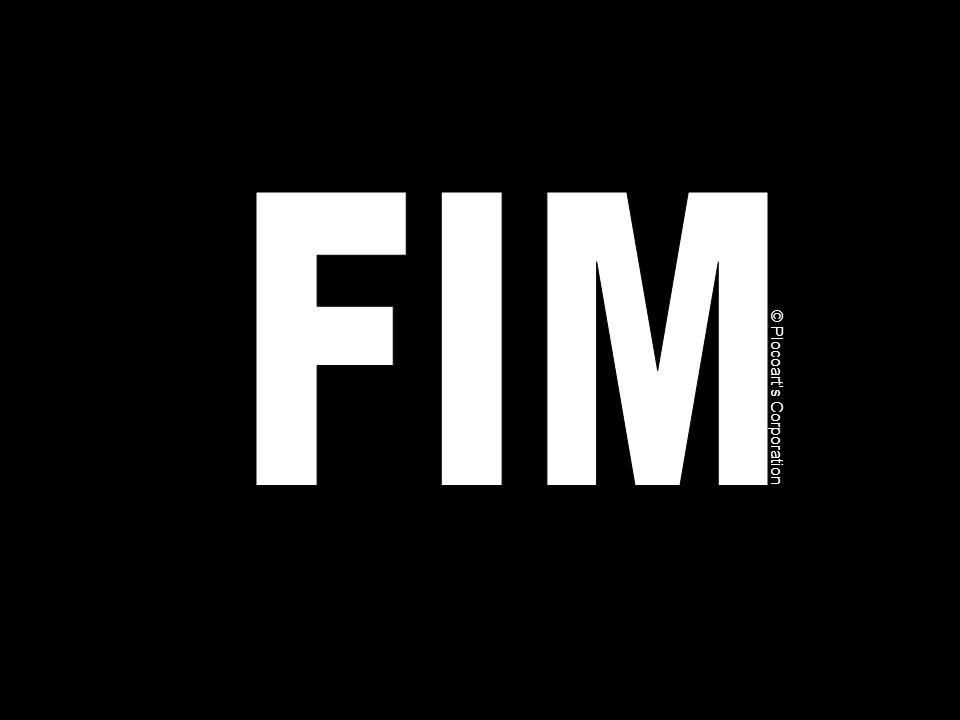 FIM © Plocoart's Corporation