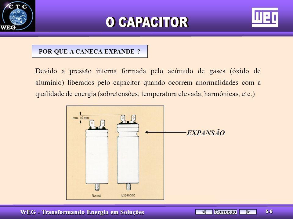 POR QUE A CANECA EXPANDE
