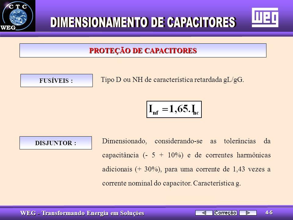 PROTEÇÃO DE CAPACITORES