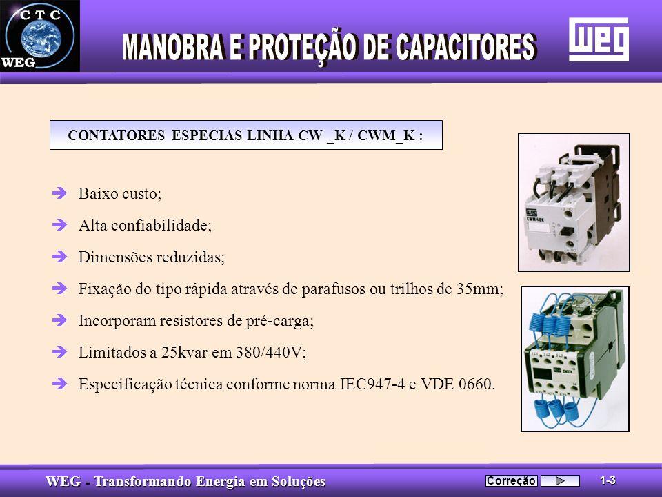 CONTATORES ESPECIAS LINHA CW _K / CWM_K :