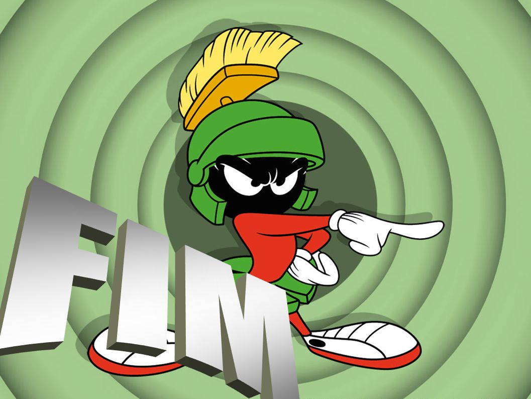 FIM 48