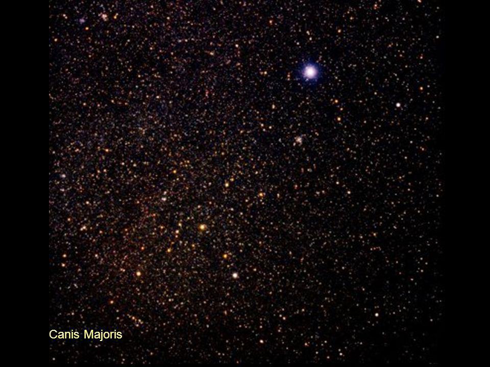 Canis Majoris