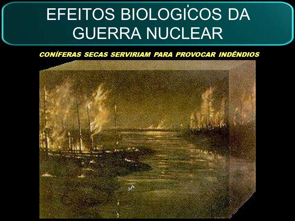 EFEITOS BIOLOGICOS DA GUERRA NUCLEAR