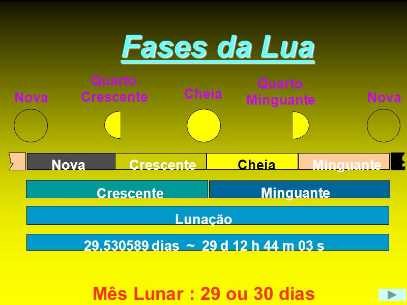 Fases da Lua Mês Lunar : 29 ou 30 dias Nova Quarto Crescente Minguante