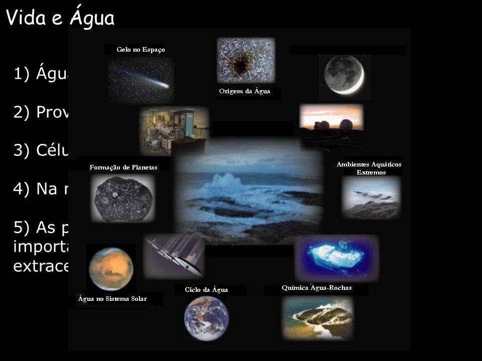 Vida e Água 1) Água cobre 3/4 da Terra;