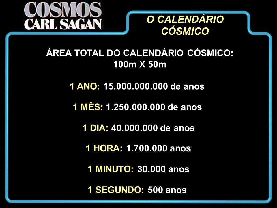 ÁREA TOTAL DO CALENDÁRIO CÓSMICO: 100m X 50m