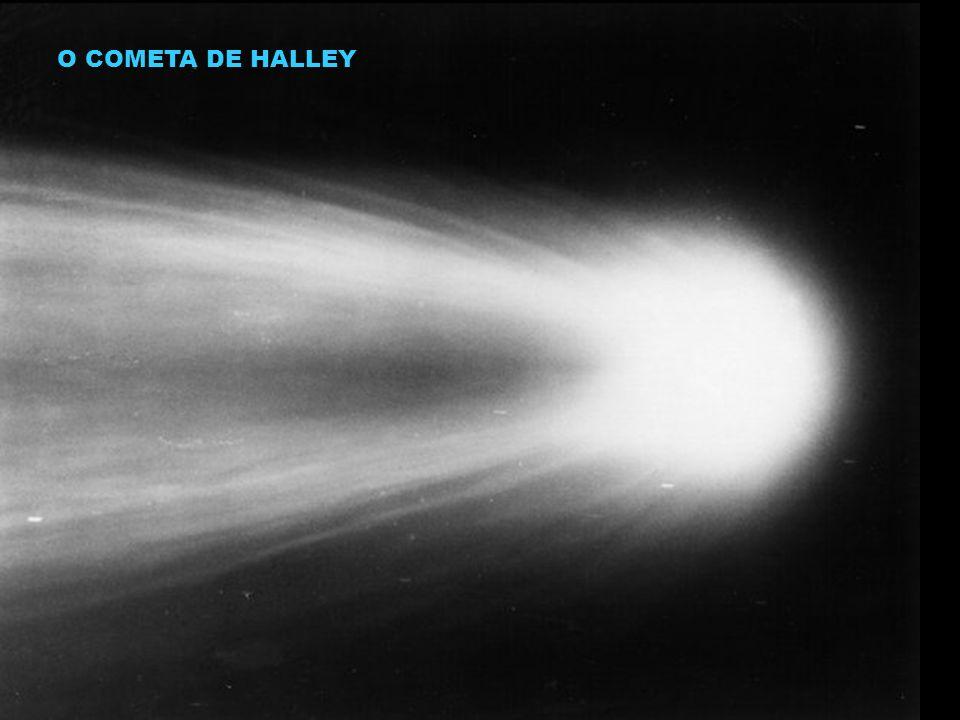 O COMETA DE HALLEY