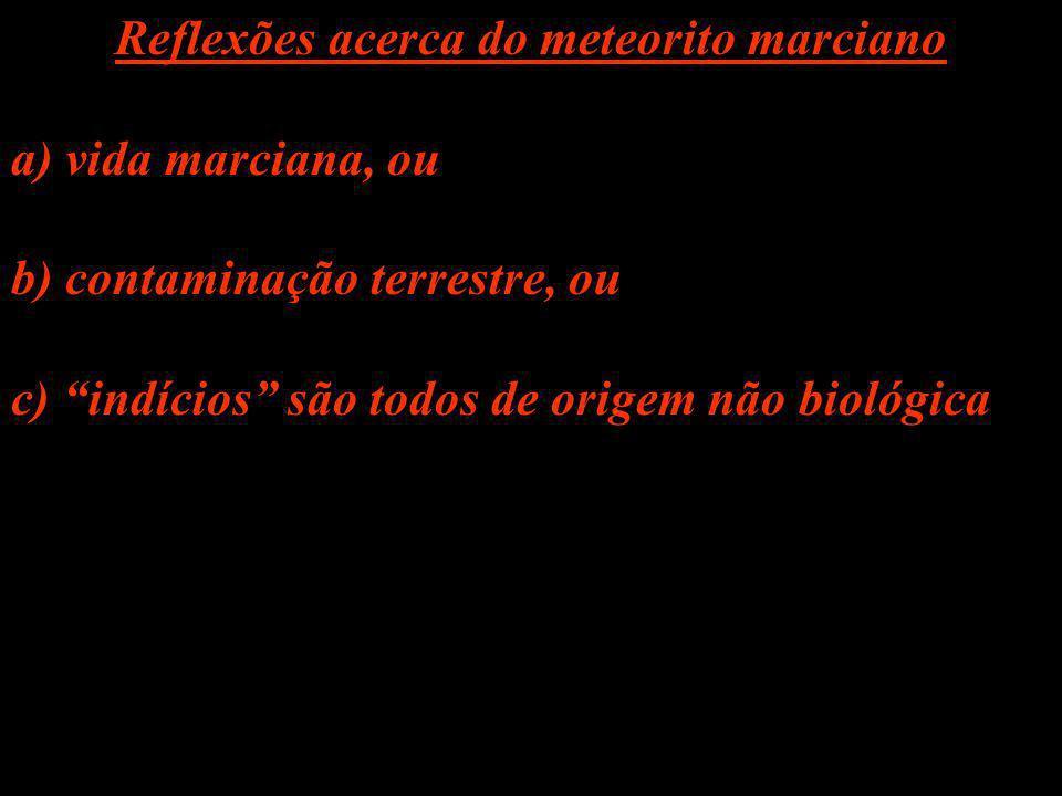 Reflexões acerca do meteorito marciano