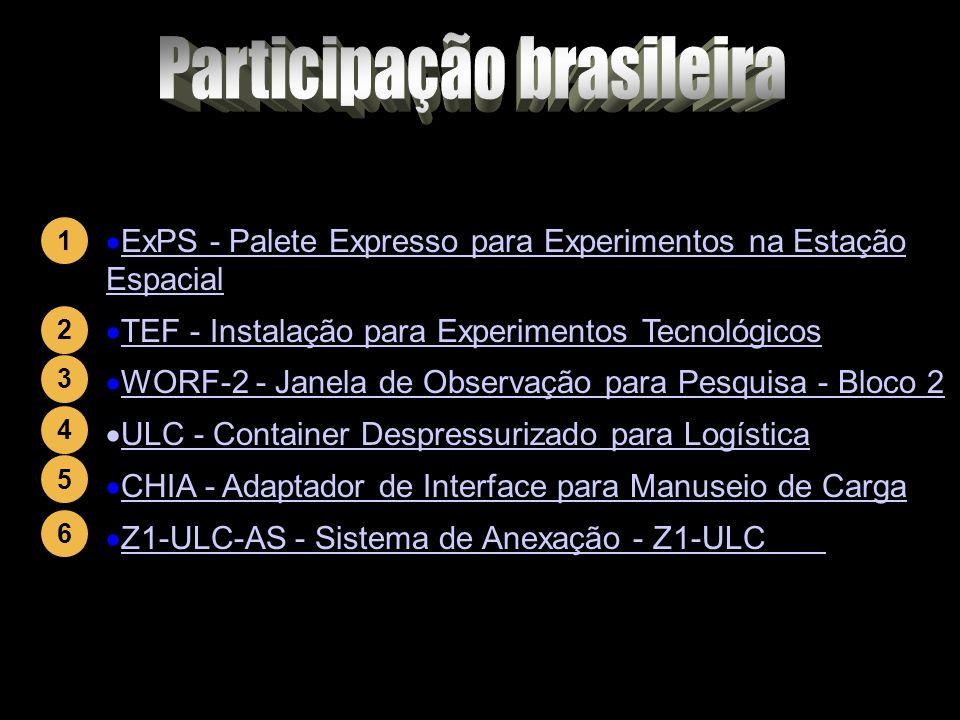 Participação brasileira