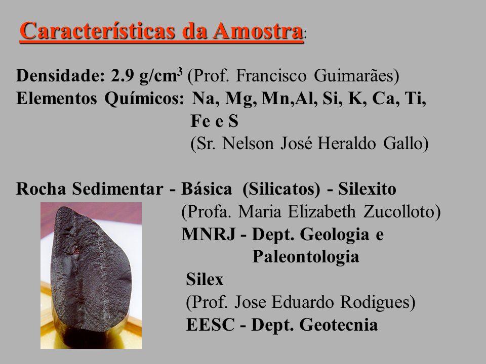 Características da Amostra: