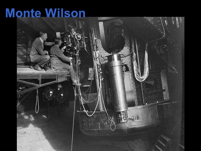 Monte Wilson
