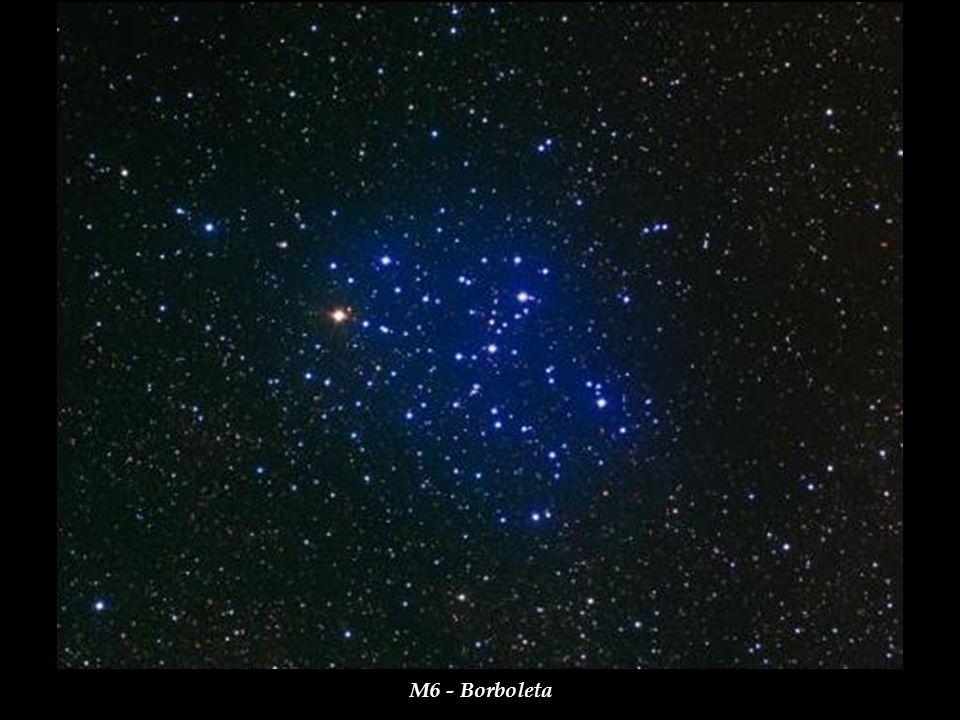 M6 - Borboleta