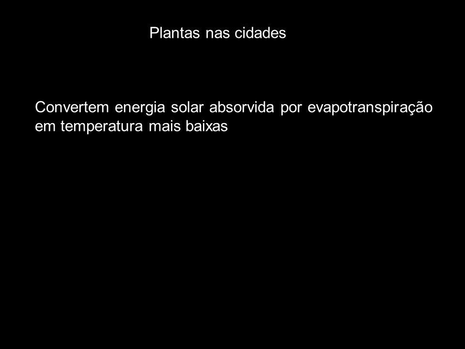 Plantas nas cidades Convertem energia solar absorvida por evapotranspiração.