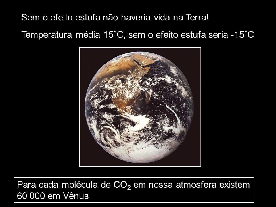 Sem o efeito estufa não haveria vida na Terra!