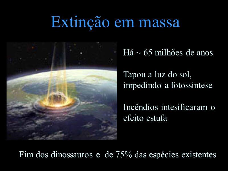 Extinção em massa Há ~ 65 milhões de anos