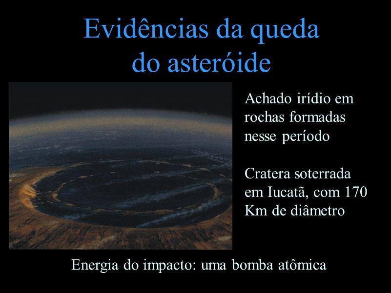 Evidências da queda do asteróide