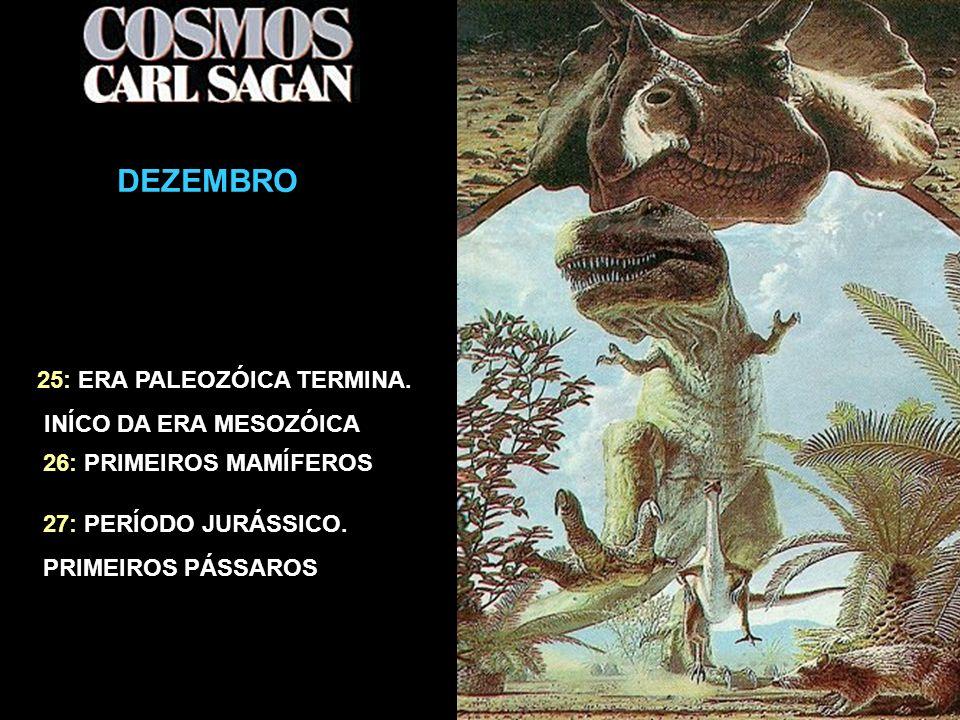 O CALENDÁRIO CÓSMICO DEZEMBRO 25: ERA PALEOZÓICA TERMINA.