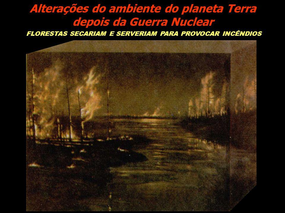 Alterações do ambiente do planeta Terra depois da Guerra Nuclear