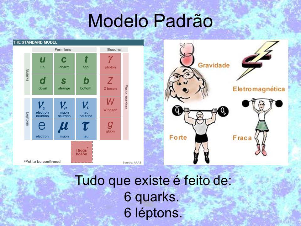 Tudo que existe é feito de: 6 quarks. 6 léptons.