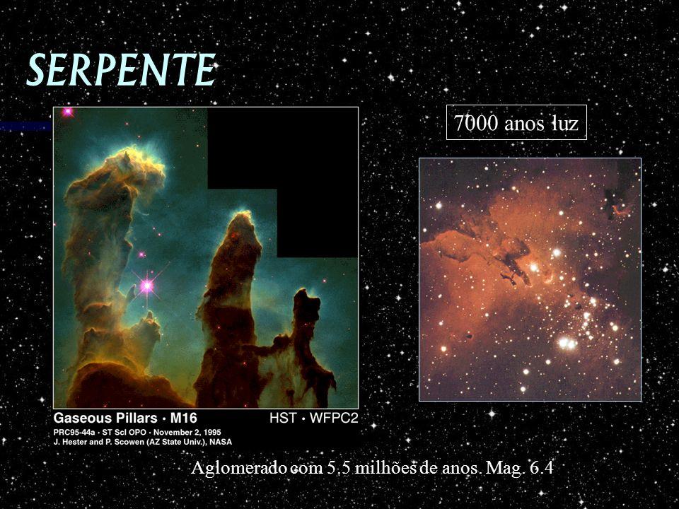 SERPENTE 7000 anos luz Aglomerado com 5.5 milhões de anos. Mag. 6.4