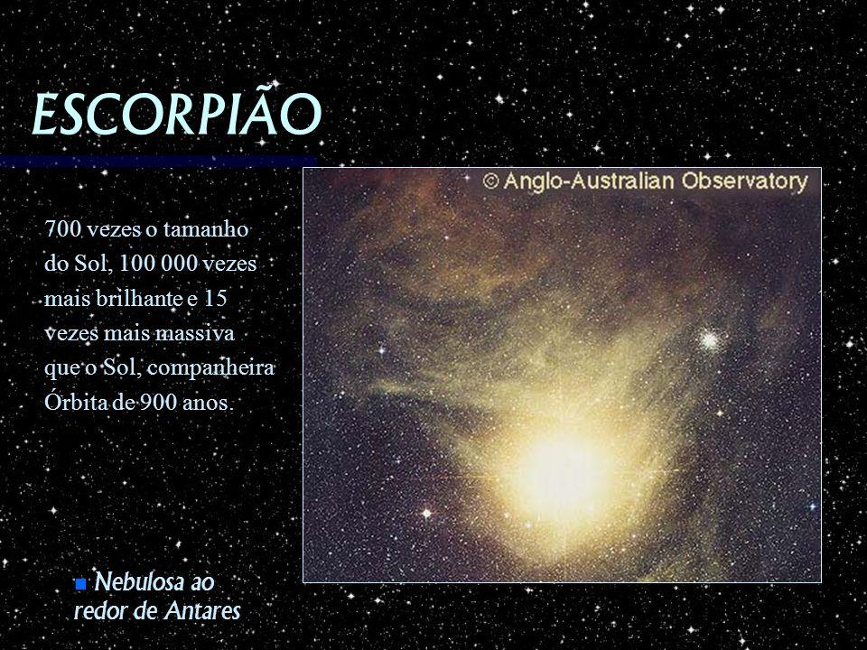 ESCORPIÃO 700 vezes o tamanho do Sol, 100 000 vezes