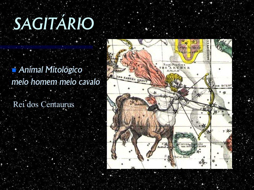 SAGITÁRIO Animal Mitológico meio homem meio cavalo Rei dos Centaurus