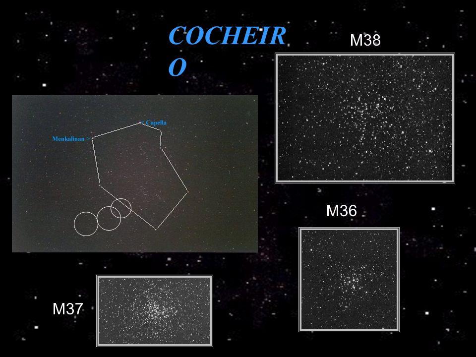 COCHEIRO M38 M36 M37