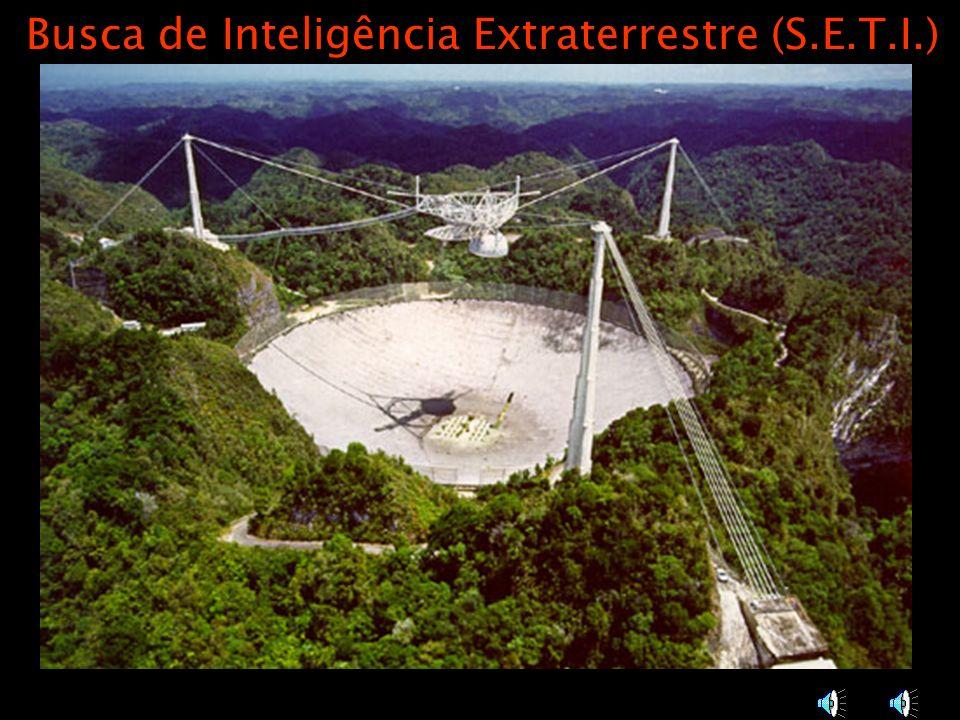 Busca de Inteligência Extraterrestre (S.E.T.I.)