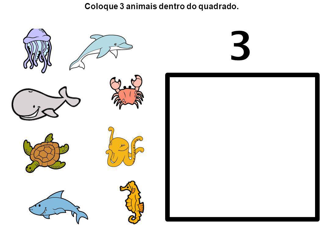 Coloque 3 animais dentro do quadrado.