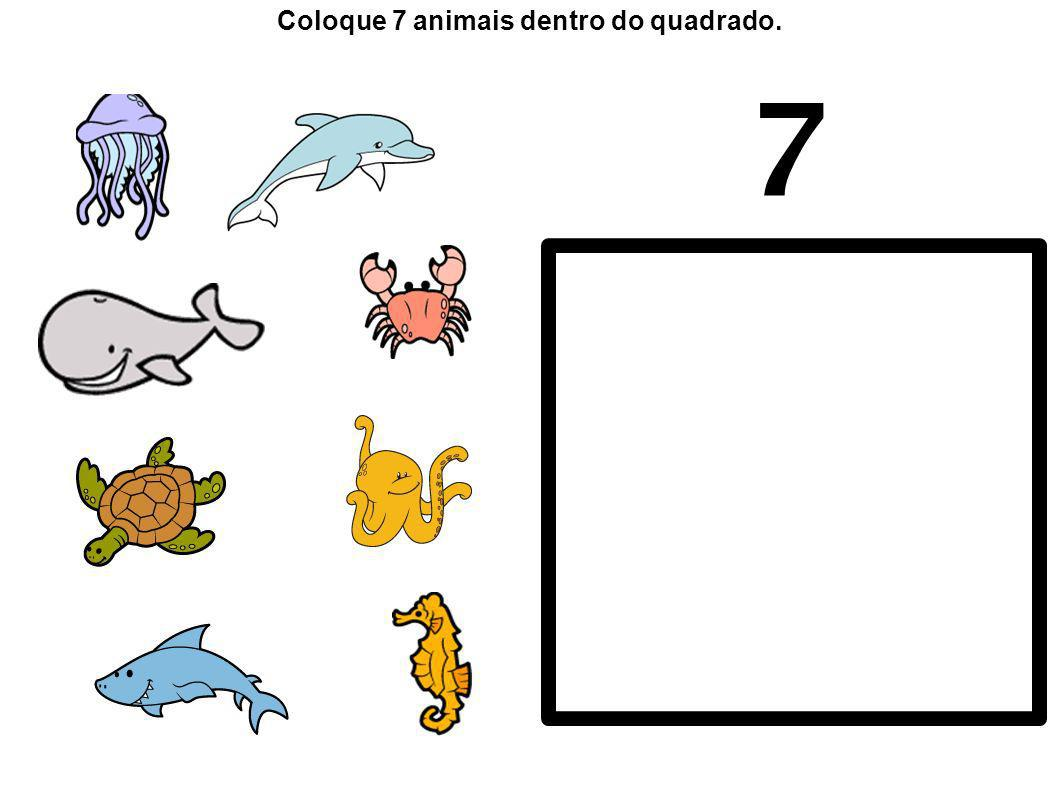 Coloque 7 animais dentro do quadrado.